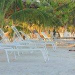 lugar de descanso frente ala playa