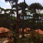 """Bungalows at """"La Maison de la Forêt"""""""