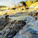 Hot water streams and geyser