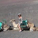 Cammelli 'parcheggiati' attendono i turisti...