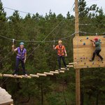 Zip line, climb, abseil, tunnel and swing through our GoZip Forest Park