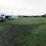 Camp field