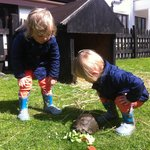 Twins and the tortoise.