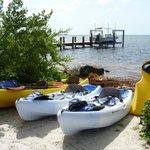 Kayaks on offer!