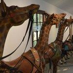 Giraffe carousel animals