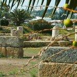 Punic Ports & Museum: Tunisia: rovine e parabole