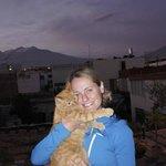 Caramelas the Cat