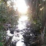 Rivière de Chiconi (Mayotte)