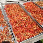 Cayenne pepper drying
