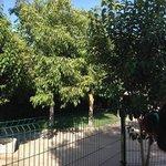 Jardin junto a la piscina