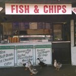 Fish and chips. And geese.