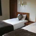 room - twin room