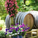 Barrels at Winery Entrance