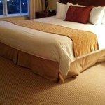 Lived in mattress/Master Bedroom