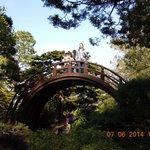 Arched Bridge in Japanese Tea Garden at Golden Gate Park