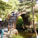 Arched Bridge in Japanese Garden in Golden Gate Park