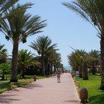 Club Hotel Riu Palm Azur, Djerba