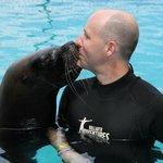 Los Caletas Sea Lion