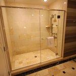 Huge Shower Bath