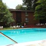 Pool Area June 2014