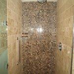 The rainwater shower