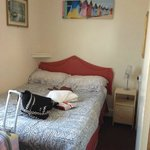 Double bed / nice decorations, comfy / clean