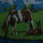 Photo de Horse Pond Inn