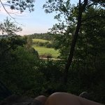 View from the hammock.