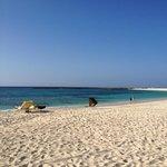 The Reef beach