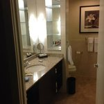 Nice bathroom. I like the aveda amenities.