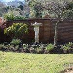 Gardenarea