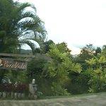 Entrance to PuraVida