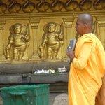 Kelaniya - monk