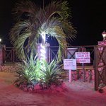 beach gate at night