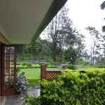 Ceylon Tea Trails (Aug 2013): View from Jeffery Room at Norwood Bungalow