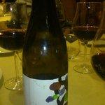 Gran vino de EL Bierzo