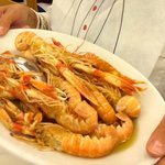 The scampi