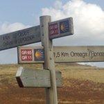Camino signpost