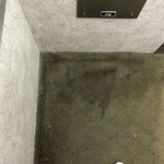 Filthy carpet in elevator