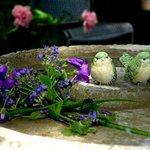 Secret Garden Birdbath