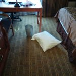 Room Not Cleaned - No Trash Liners