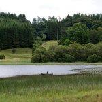 inizio del lago Loch Lomon