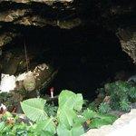 Cueva Jameos del Agua