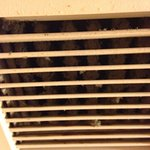 Vent in bathroom above toilet. It did not work.