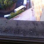 Bird droppings on ledge