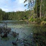 Lake Cleowox