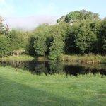 View over Crubhenbeg Lochan
