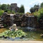 Waterfall / Pond.