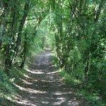 Lane close to Val de Costes