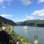 Blick auf die Donau v.d. Terrasse
